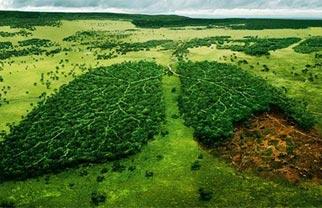 Agro greenhouse gas