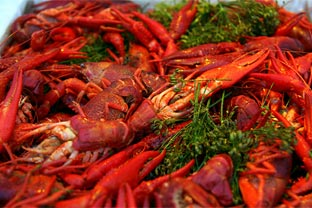 China crawfish