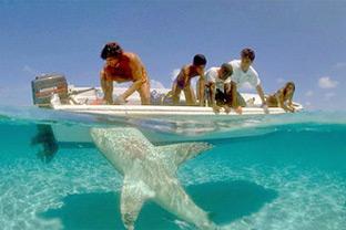 Tourists Florida