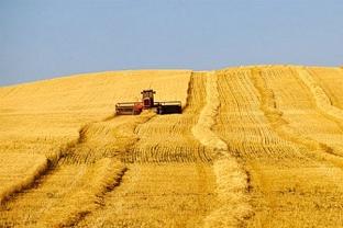 Assiniboia Farmland