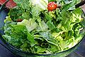 Salad Ascariasis