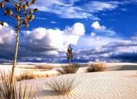 Sahara heat