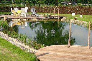 Natural home pools
