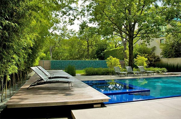 Connect With Nature In Eco Swimming Pool