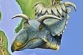 Dinosaur Laramidia