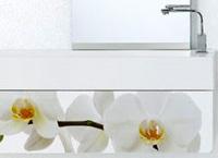 Tantante White Flower